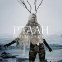 Artist Name: P - P'taah / Perfumed Silence 【CD】