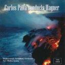 作曲家名: Wa行 - 【送料無料】 Wagner ワーグナー / 『神々の黄昏』抜粋、『トリスタンとイゾルデ』前奏曲と「愛の死」 パイタ&フィルハーモニック響、ニュー・フィルハーモニア管 輸入盤 【CD】