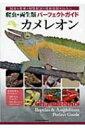 【送料無料】 爬虫・両生類パーフェクトガイド カメレオン 【全集・双書】