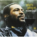 Marvin Gaye マービンゲイ / What's Going On 【LP】