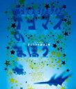 【送料無料】 Tegomass テゴマス / テゴマス 3rdライブ テゴマスのまほう★ 【Blu-ray】 【BLU-RAY DISC】