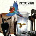 Artist Name: P - 【送料無料】 Peter Visti / Illusions In A Twisted Mind 輸入盤 【CD】
