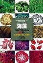 【送料無料】 海藻 日本で見られる388種の生態写真+おしば標本 ネイチャーウォッチングガイドブック / 阿部秀樹 ・野田三千代【図鑑】