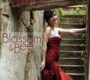 Artist Name: S - 【送料無料】 Sara Gazarek サラガザレク / Blossom & Bee 輸入盤 【CD】