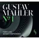 【送料無料】 Mahler マーラー / 交響曲第1番『巨人』 ルイージ&ウィーン交響楽団 【LP】