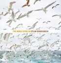 Artist Name: D - 【送料無料】 Dylan Mondegreen / World Spins On 輸入盤 【CD】