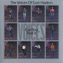 艺人名: V - 【送料無料】 Voices Of East Harlem ボイスオブイーストハーレム / Can You Feel It 輸入盤 【CD】