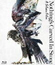 Nothing's Carved In Stone / A Silver Film (Blu-ray) 【BLU-RAY DISC】