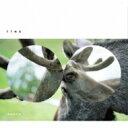 Artist Name: T - TTNG (This Town Needs Guns) / 13.0.0.0.0 【CD】