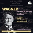 作曲家名: Wa行 - 【送料無料】 Wagner ワーグナー / Transcriptions For Solo Piano By August Stradal Vol.1: Vizcarra 輸入盤 【CD】