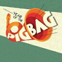 藝人名: P - Pigbag ピッグバッグ / Year Of The Pigbag 【CD】