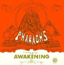 Artist Name: P - Pharaohs (ファラオス) / Awakening 【CD】