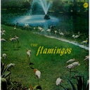艺人名: F - The Flamingos / Flamingos 【CD】