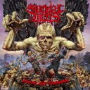 Artist Name: S - 【送料無料】 Suicidal Angels スイサイダルエンジェルズ / Divide & Conquer 【CD】