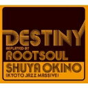 Artist Name: S - 沖野修也 / Destiny Replayed By Root Soul 【CD】