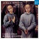 Bach, Johann Sebastian バッハ / モテット集 ユングヘーネル&カントゥス・ケルン 輸入盤
