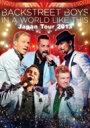 【送料無料】 Backstreet Boys バックストリートボーイズ / IN A WORLD LIKE THIS Japan Tour 2013 豪華盤(Loppi・HMV・ファンクラブ限定販売 2枚組 Blu-ray) 【BLU-RAY DISC】