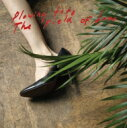 Iceage / Plowing Into The Field Of Love 輸入盤 【CD】