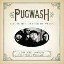 艺人名: P - 【送料無料】 Pugwash / Rose In A Garden Of Weeds: A Preamble Through The History Pugwash 輸入盤 【CD】