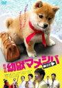 乐天商城 - 映画版「幼獣マメシバ 望郷篇」 【DVD】