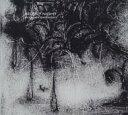 藝人名: W - 【送料無料】 William Basinski ウィリアムバシンスキ / Silent Night 輸入盤 【CD】