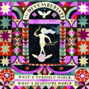 Artist Name: D - 【送料無料】 Decemberists / What A Terrible World, What A Wonderful World 輸入盤 【CD】