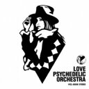 LOVE PSYCHEDELICO ラブサイケデリコ / LOVE PSYCHEDELIC ORCHESTRA (アナログレコード)【完全限定商品】 【LP】