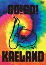 ショッピングKAELAND 【送料無料】 木村カエラ / KAELA presents GO!GO! KAELAND 2014 -10years anniversary- 【DVD通常盤】 【DVD】