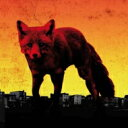 THE PRODIGY プロディジー / Day Is My Enemy 輸入盤 【CD】