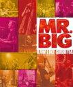 Artist Name: M - 【送料無料】 MR.BIG ミスタービッグ / Raw Like Sushi 114+112 (5CD+Blu-ray+3DVD)(Deluxe Edition) 【Hi Quality CD】