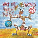 藝人名: P - Public Image LTD パブリックイメージリミテッド / What The World Needs Now 輸入盤 【CD】