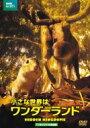 小さな世界はワンダーランド TVオリジナル完全版 DVD 【DVD】