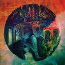 Yppah / Tiny Pause 【LP】