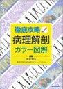 【送料無料】 徹底攻略!病理解剖カラー図解 / 清水道生 【本】