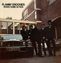 Flamin Groovies / Shake Some Action 【LP】