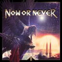 Artist Name: N - Now Or Never (Metal) / II 輸入盤 【CD】