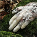 Antwood / Virtuous.scr 輸入盤 【CD】