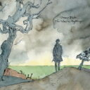James Blake ジェームズブレーク / Colour In Anything 【CD】