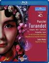 Puccini プッチーニ / 『トゥーランドット』全曲 チェン・カイコー演出、メータ&バレンシア州立管、グレギーナ、ベルティ、他(2008 ステレオ) 【BLU-RAY DISC】