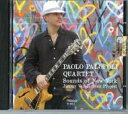Artist Name: P - 【送料無料】 Paolo Palopoli / Sounds Of New York: Jimmy Van Heusen Project 輸入盤 【CD】