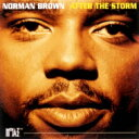 Norman Brown ノーマンブラウン / After The Storm + 1 【SHM-CD】
