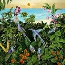 艺人名: M - 【送料無料】 Mark Barrott / Sketches From An Island 2 輸入盤 【CD】