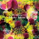 【送料無料】 坂田尚子 サカタナオコ / Dreaming Tree 輸入盤 【CD】