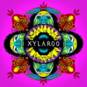 Artist Name: X - Xylaroo / Sweetooth 輸入盤 【CD】