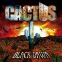 藝人名: C - 【送料無料】 Cactus カクタス / Black Dawn 輸入盤 【CD】