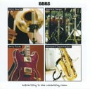 Artist Name: B - 【送料無料】 Bbrs / Improvising In The Consulting Room 輸入盤 【CD】