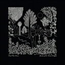 Artist Name: D - Dead Can Dance デッドカンダンス / Garden Of The Arcane Delights / Peel Sessions 輸入盤 【CD】