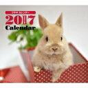 2017年 ミニカレンダー ウサギ / 井川俊彦 【単行本】