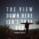 Pinhole Down / View Down Here Isn't That Bad 【LP】
