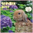 うさぎと暮らすカレンダー 2017年 壁掛タイプ 【本】